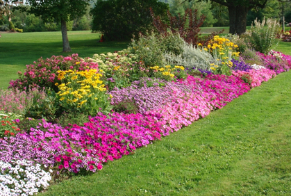 Home Flower Garden Ideas
