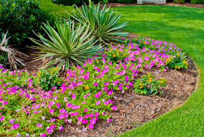 Flower Garden Designs annual flower bed designs with wooden board Most Popular Flower Bed Designs Flower Garden Ideas Flowering Gardening Plants Pictures With Diy Design Ideas