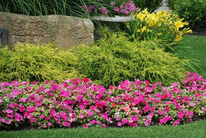 simple flower bed designs flower garden ideas flowering gardening plants designs ideas pictures and diy plans