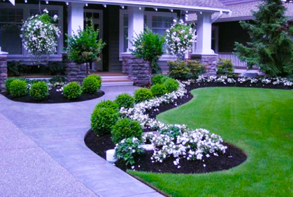 Front yard landscape ideas designs photos and plans for Front landscaping plans