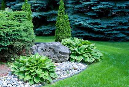 Landscaping With Rocks Pictures 2016 Designs Ideas