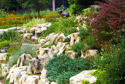 Simple landscaping with rocks and stones designs ideas pictures and diy plans