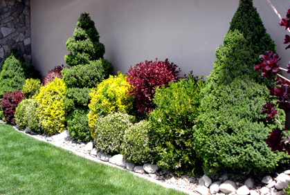 Pictures of shrubs for landscaping 2016 design plans for How to plant bushes in front of house