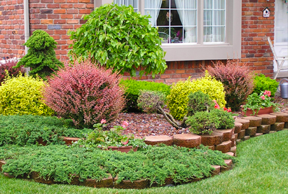 Best types of shrubs for landscaping designs photos for Different garden designs