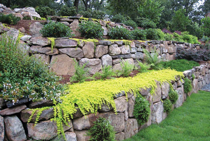 Retaining Wall Design Ideas boulder retaining wall design ideas garden landscape Simple Landscape Retaining Wall Designs Ideas Pictures And Diy Plans