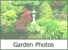 Garden Design Photo Gallery