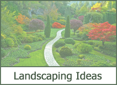 landscape border edging
