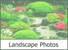 Garden Design Garden Design with photoshop landscape design