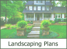 Shrubs for Landscaping Plans