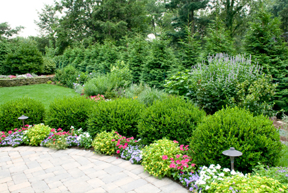 Pictures Of Landscaping With Shrubs And Bushes Designs Ideas Photos